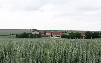 Hofgut Mauer
